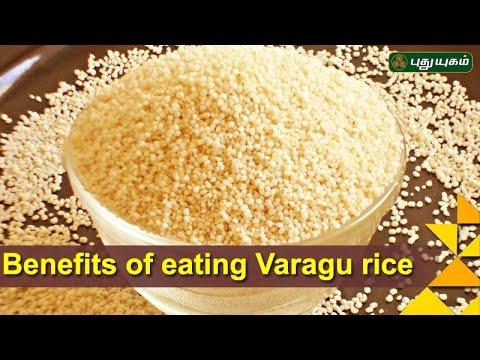 Benefits of eating Varagu rice/Kodo rice  | Unave Marundhu | 13/11/2016