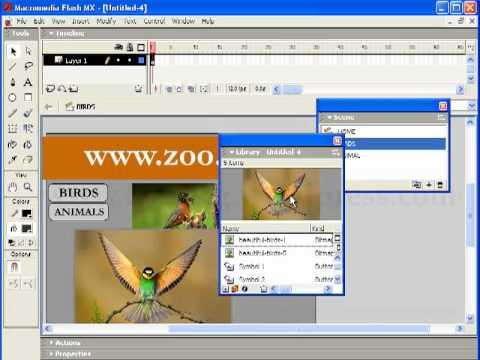 Basic web designing using flash.mp4