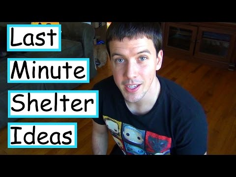Last- Minute DIY Outdoor Feral Cat Shelter Ideas