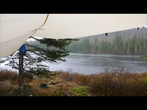 Crown Land Exploratory Trip (Day 2 of 4) - Enjoying a Day Beneath the Tarp