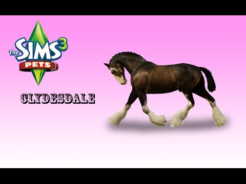 Creating a Clydesdale! /The sims 3