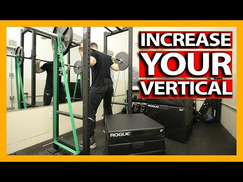 VERTICAL JUMP TRAINING WORKOUT (Exercise Explanations) How To Increase Your Vertical Jump - DAY 1