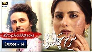 Surkh Chandni | Episode 14 | 23rd July 2019 | ARY Digital Drama