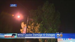 Wild Winds Topple Trees Around San Fernando Valley, Burbank