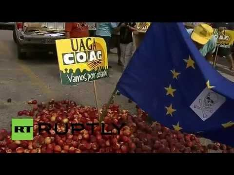 Spain: Embargo-hit farmers burn EU flag and rotting fruit over EC payout