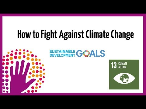 How to Fight Against Climate Change