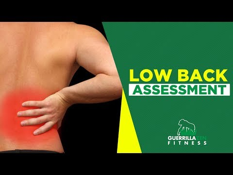 How to Assess Your Own LOW BACK Stability | Leg Lower Test
