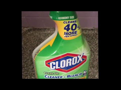 Clorox Clean Up to remove mold in shower