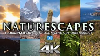 """6 Hours Of 4k Nature Scenes   Sounds For Relaxation: """"naturescapes"""" World"""