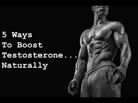 5 Ways To Boost Your Testosterone...Naturally - Neil O'Nova @Stronger+Leaner