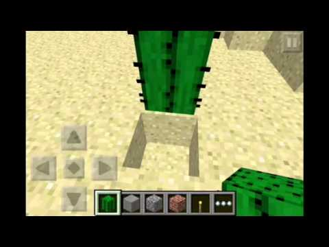 How to make it rain cactus in minecraft PE