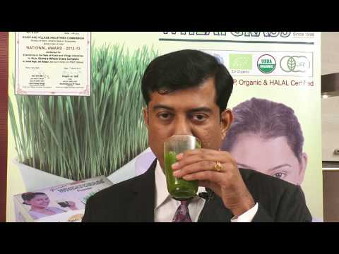 Health Benefits of Wheatgrass Powder? गेहूँ के ज्वारे के फ़ायदे I How to buy Wheatgrass Powder?