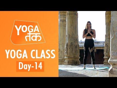 Yoga Class Fourteen | Yoga Class |Yoga Tak