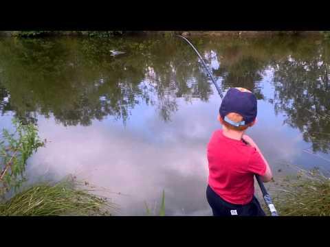 Boy 7 catches 17 pound mirror carp at Gawsworth fisheries.