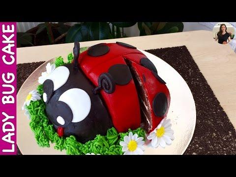 Lady Bug Cake  #Cake