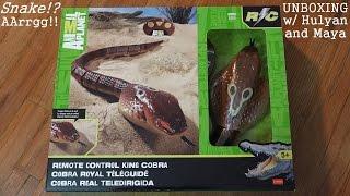 Download Animal Toys: Remote Control King Cobra Snake Unboxing w/ Hulyan & Maya Video
