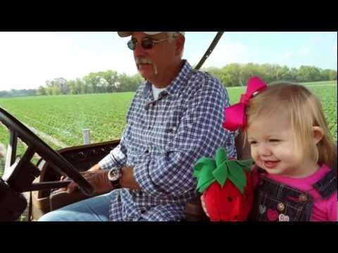 Florida Strawberry Farmer Mark Harrell