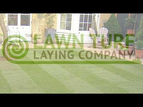 The Lawn Turf Laying Company for Turf Laid in London, Kent, Surrey, Sussex, Essex & Surrounding