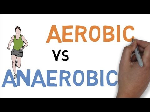AEROBIC vs ANAEROBIC DIFFERENCE