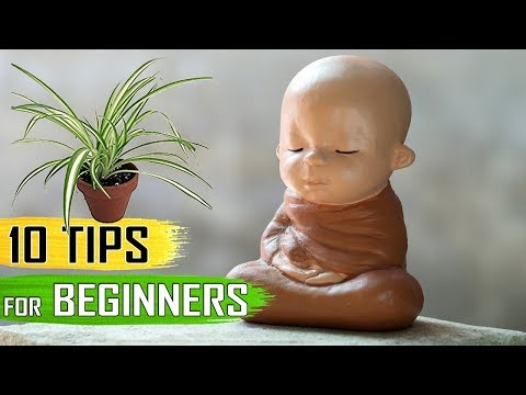 GARDEN TIPS: Top 10 Gardening Tips and Lessons - Beginners Guide to Gardening - English