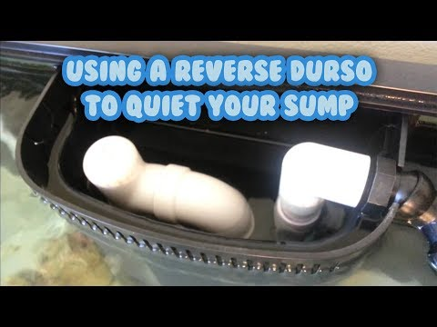 Quieting your sump with a reverse durso - no more splashing and bubbling!