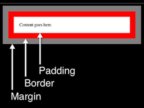 Padding in CSS Lecture 41-Complete HTML and CSS Website Tutorial for beginners
