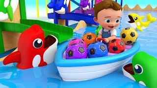 Download Dolphins Color Balls Tumbling Toy Set 3D - Little Baby Learning Colors for Children Kids Educational Video