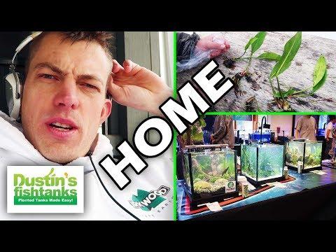 MONDAY AFTER: Aquarium Travels