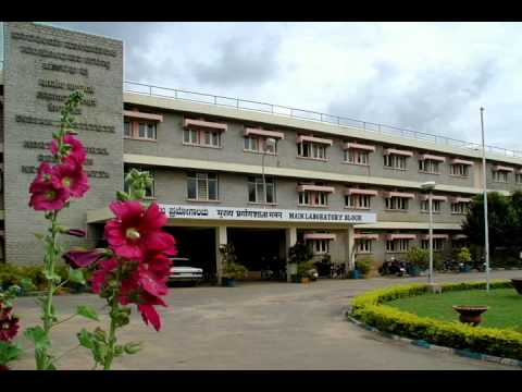 Guava Cultivation Radio Talk Hindi mpeg4