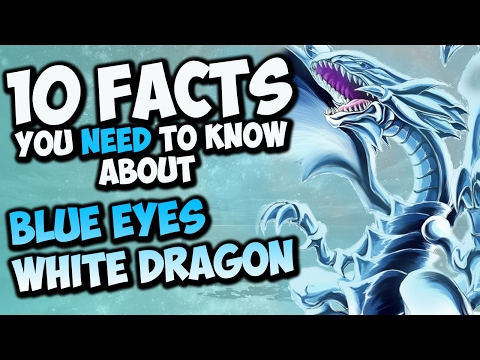 10 Facts About Blue Eyes White Dragon You Need To Know! - YU-GI-OH! Card Trivia