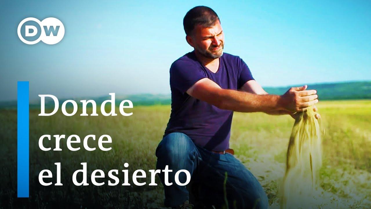 Cambio climático en Rumania   DW Documental