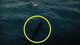 Megalodons Caught on Tape Videos - 9videos tv