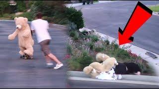 TEDDY BEAR ROOMMATE CRASHED HIS SKATEBOARD!