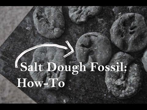 Salt Dough Dinosaur Fossils: How-To