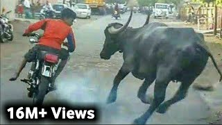 Most Funny Completion Tik Tok Funny Video Pakistani. #Funny_Pakistani