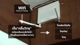 Router ZTE F668 : ตั้งค่า ddns และ เซ็ต forward port - valavideo com