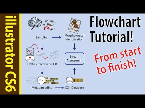 Illustrator CS6 Tutorial: Flowcharts for beginners! (Poster how to Part 5)