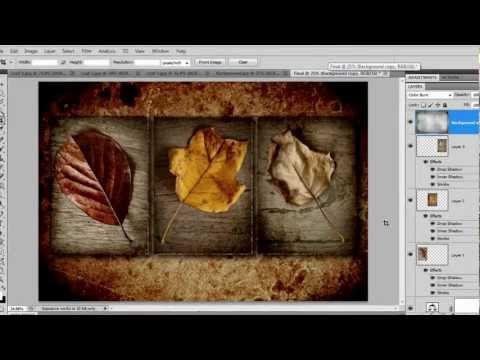 Three Photos + one Texture = Triptych