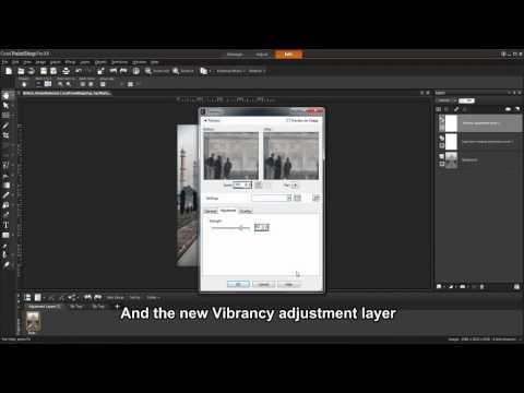 PaintShop Pro X4 - Adjustment Layers