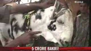 Badshah: Goat with Allah pattern for Rs 5 crore