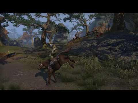 The Elder Scrolls Online Horse bug