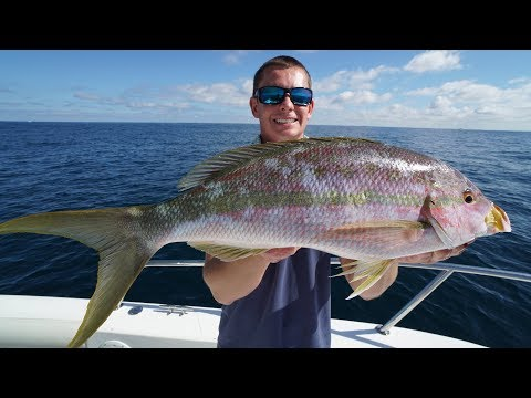 The SECRET! Bait and Tackle Shops WONT Teach You!! -How to
