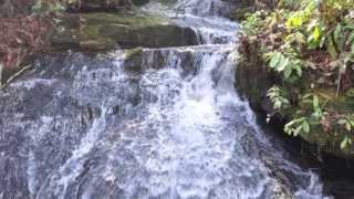 river runs chuck owen  the jazz surge
