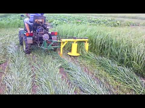 Homemade rotary mower in action 2