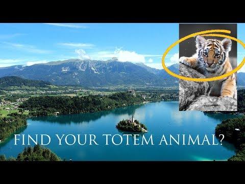 Let's Find YOUR Totem (Spirit) Animal!