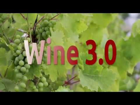 How To Install Wine 3.0 on Linux Mint 18.3