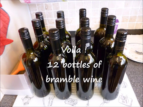 How to make bramble (blackberry) wine ; a quick guide.