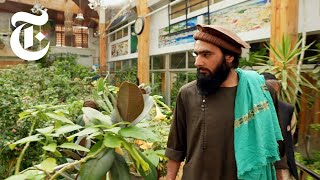 Inside an Abandoned Mansion That 150 Taliban Now Call Home   Afghanistan News