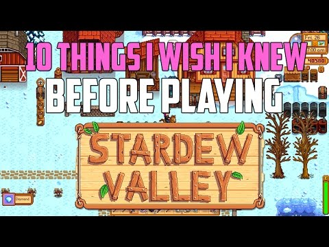 Stardew Valley 10 Things I Wish I Knew Before Playing   Stardew Valley Guide   Stardew Valley Tips