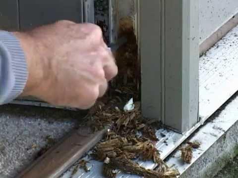 Filling rotten door wood.